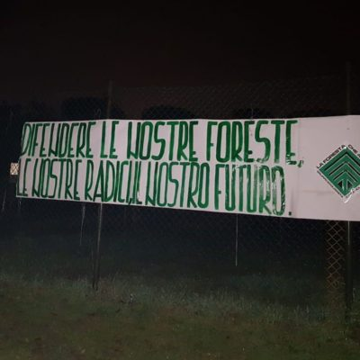 """""""La Foresta che Avanza"""" pianta alberi in tutta Italia"""